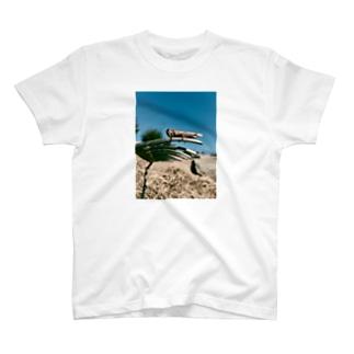 アナゴ T-shirts