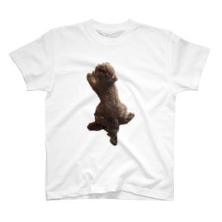 ステッカーるな T-shirts