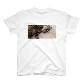 BIG猫 すやすや T-shirts