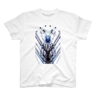 symmetry T-shirts