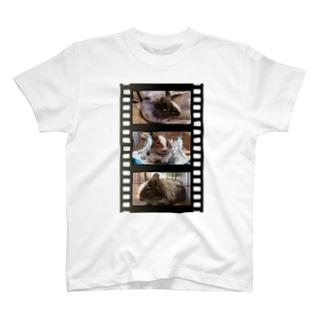 Big Bat Boss ポッドキャスト配信中!の茶々丸フィルム T-shirts