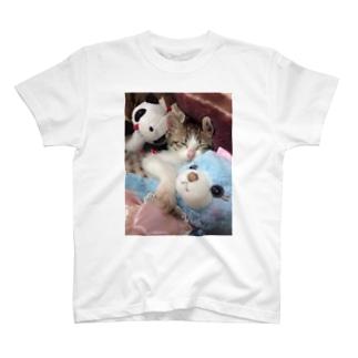 ganmo子猫 T-shirts
