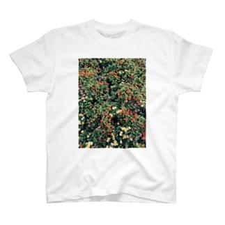 庭 T-shirts