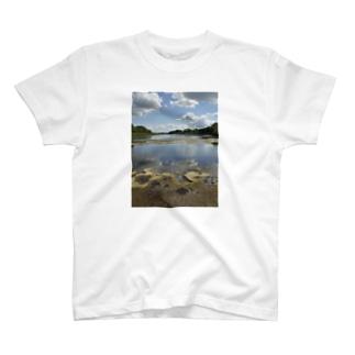 イギリス海岸 T-shirts