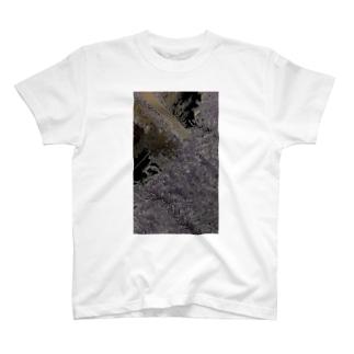 諸悪の根源のように評されていたその人物は、最後の最後まで反対していた T-shirts
