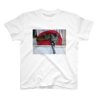 仲良し2匹お休み中 T-shirts