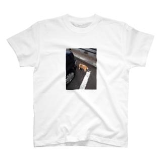 ノミを取ってるの T-shirts