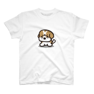 うわ目づかいのシーズー T-shirts