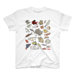 Very Cyprinids!(international) T-shirts