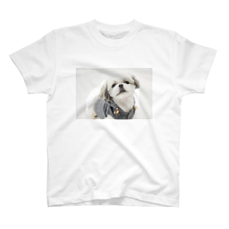 シーズーししまる T-shirts