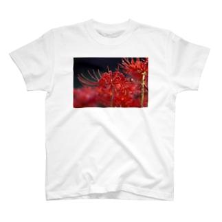 彼岸花 T-shirts