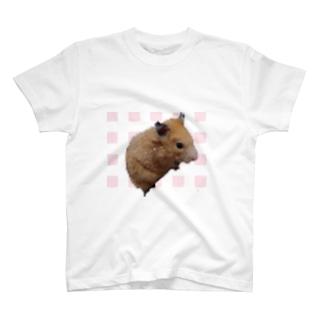 モイちゃん2 T-shirts