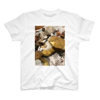 きのこいっぱい採れたね T-shirts