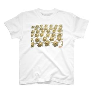 NINA Close Distance Budgetgaeru T-shirts