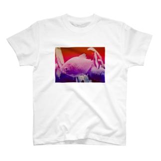 #1 ピラニア Tシャツ T-shirts