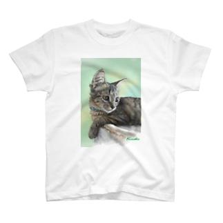きじねこのミクちゃん T-shirts