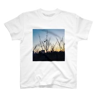 青春の夜明け T-shirts
