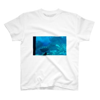 エイ T-shirts