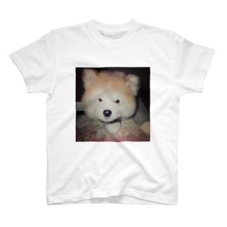 もこちゃん T-shirts