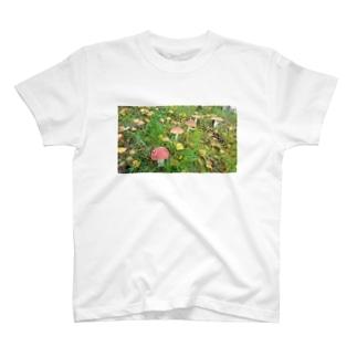 毒キノコ T-shirts