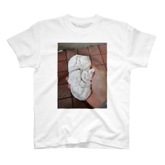 白子っぽい洗濯物 T-shirts