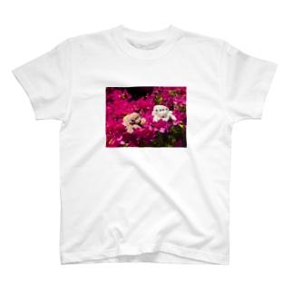 ハエトリグモ ぬいぐるみ  T-shirts