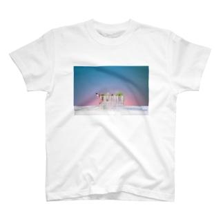 試験管 T-shirts