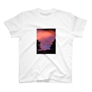 イケてるティーシャツ T-shirts
