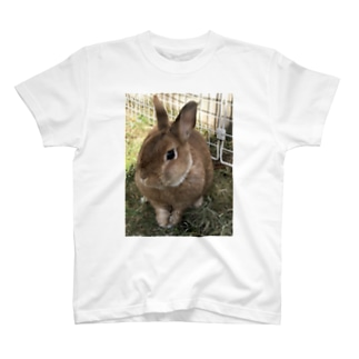 うさんぽアイテム T-shirts