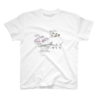 サラサハタ イラスト T-shirts