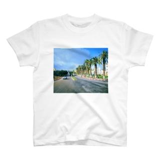 モロッコ:椰子の並木道 Morocco: Palm Tree-Lined Street T-shirts