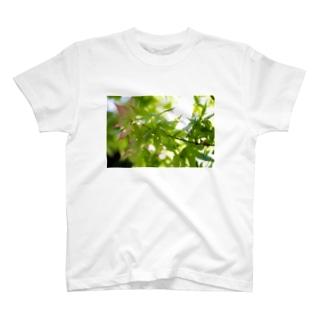 新緑 T-shirts