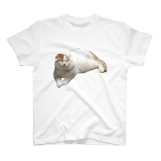 前田くんの日常 T-shirts