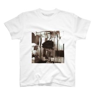 半永久的な美しさ T-Shirt