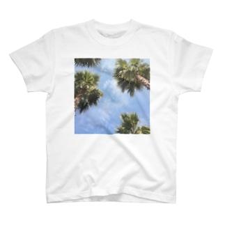 beach7 T-shirts