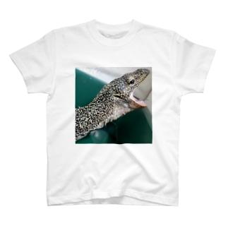 おミズぐっず(マングローブオオトカゲ) T-shirts
