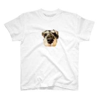 くったろす T-shirts