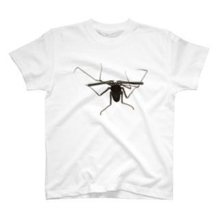 ウデムシ T-shirts