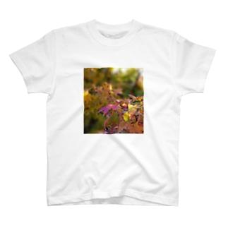 mariaMadeのもみじちゃん T-shirts