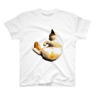 だっこねこ3 T-shirts