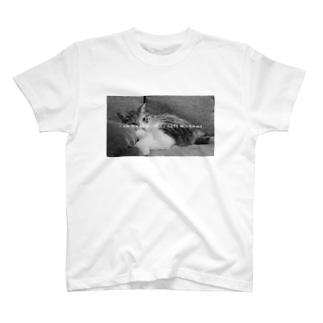吾輩は猫である T-shirts