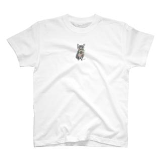 100nyans038.momoriboncat T-shirts