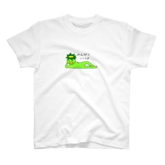 かっぱ T-shirts