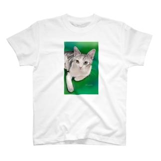 エキゾチックショートヘア チャビー君 T-shirts
