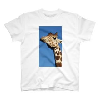 福山どうぶつえん T-shirts