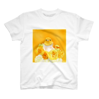 KISAのOrange〜コマドリ T-shirts
