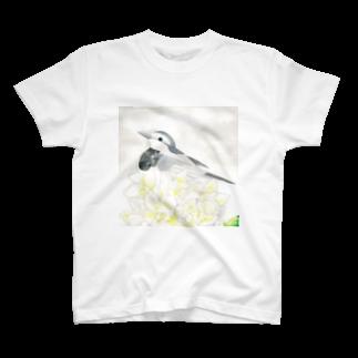 KISAのWhite〜ハクセキレイ T-shirts
