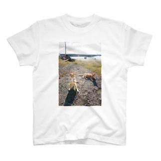 にゃんこボクサー T-shirts