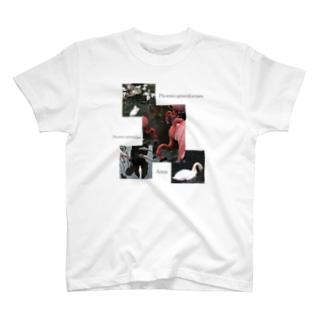 Phoenicopteriformes T-shirts