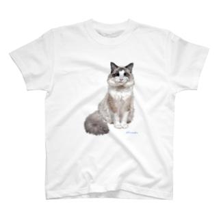 ラグドール フィナンシェちゃん T-shirts